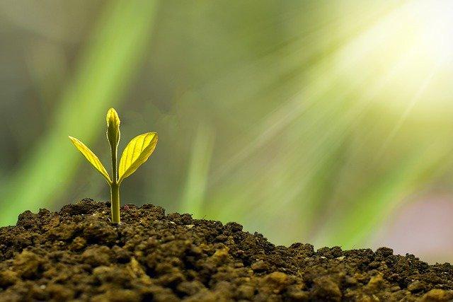 Sustainable Finance Sujetbild